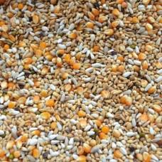 Platteeuw speciál - bílkoviny/tuky č. 523 - 20 kg